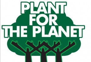 logo-PftP